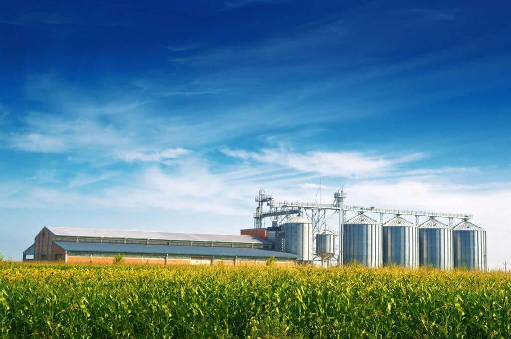 Послуги із складування та зберігання зерна